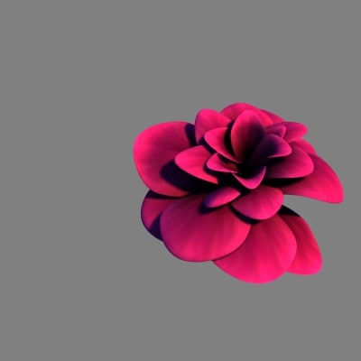 3d purple rose model