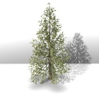 cinema4d tree works
