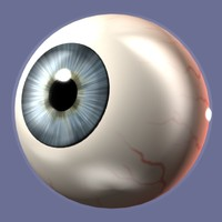 eye eyeball 3d model