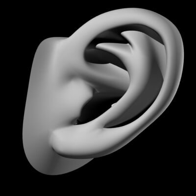 lightwave subpatches ear