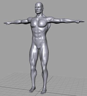 3d human male person model