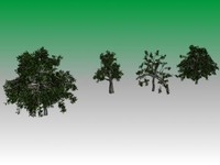 3d trees model