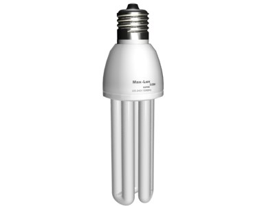 3d model energy-saving bulb