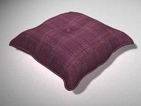 pillow_3ds