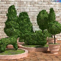 plants grass bush 3d model