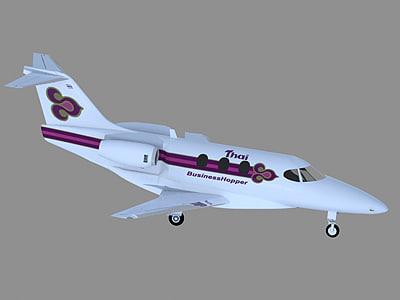 3d model of raytheon thai airways