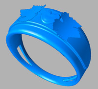 ring 3d ige