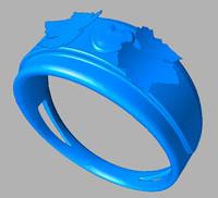 ring.igs