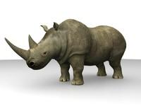 african black rhino 3d obj