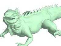 maya iguana lizard
