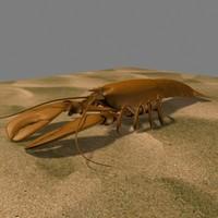 3d model lobster