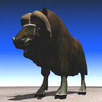 free muskox beast northern 3d model