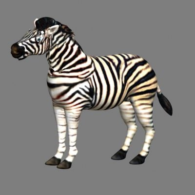 3d model talking zebra