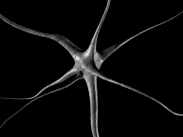ganglia nerve neuron cell 3d model