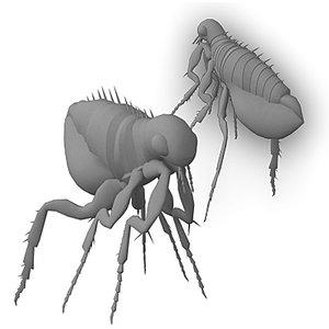 3ds flea
