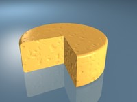 3d slice cheese model