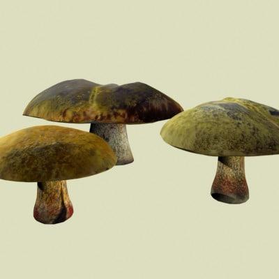 mushroom 3d 3ds