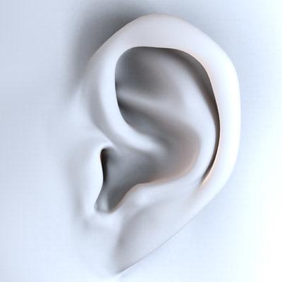 ears character human 3d model