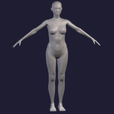 female anatomy human 3d model