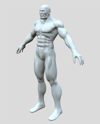 Muscle Man Human Anatomy 3d Model