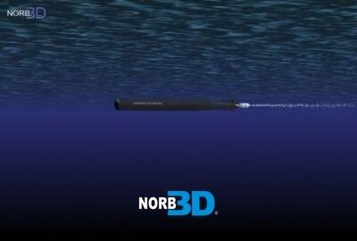 3d torpedo tigerfish model
