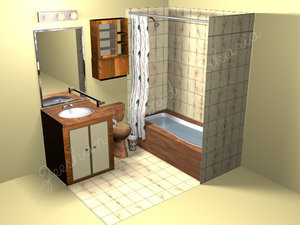 washroom toilet sink bath max
