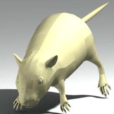 x rat