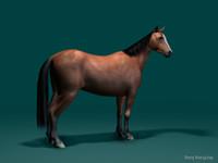 3d model lightwave horse