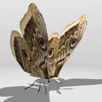 3dsmax moths