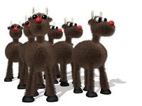 reindeer.zip