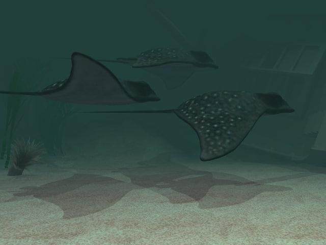 stingray fish 3d model