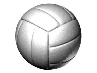 free max mode volley ball