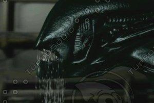 alien-move_normal.max