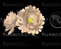 FLOWER-LILY.LWO