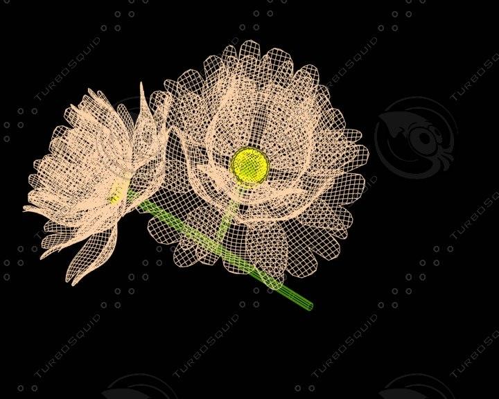 flowers 3d lwo