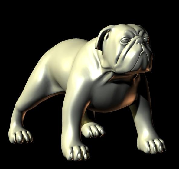 bull bulldog dog 3d model