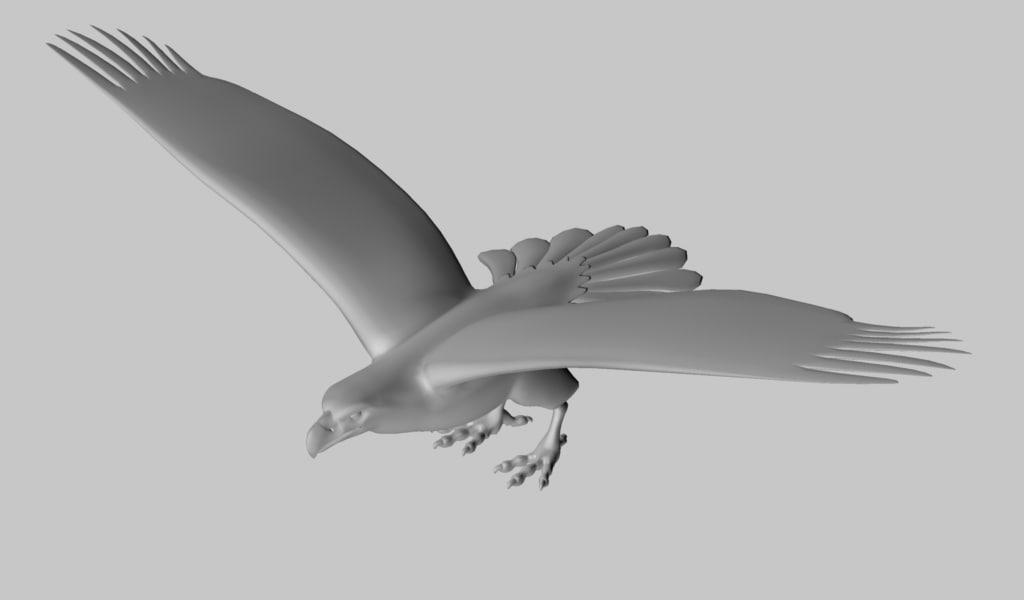 3d bald eagle model