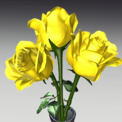 rose flowers 3d model