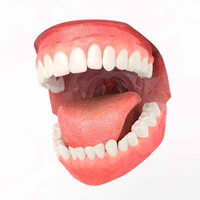 aaamouth mouth teeth 3d model