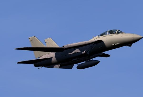 Grumman F-14 Tomcat 3D Models for Download | TurboSquid