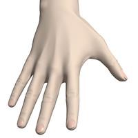 max woman hand