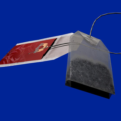 teabag bag 3d max