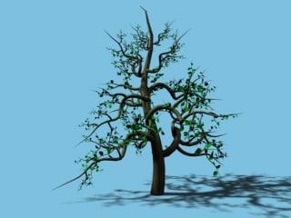 branching tree growing 3d model