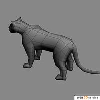 tiger cat max