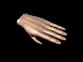 free ma model human hand