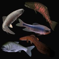 fresh fish collection1 3ds