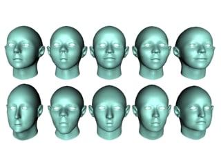 10 female mesh heads 3d model