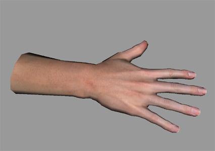 human hand 3d model