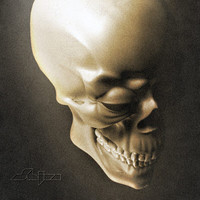 3d skull jaw teeths model