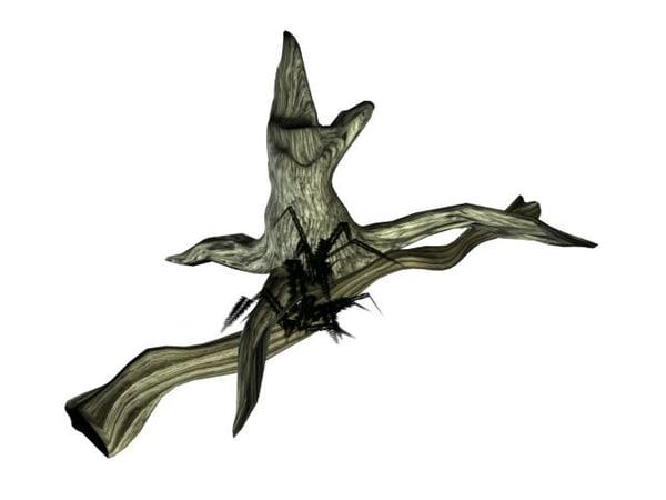dead tree fern 3d ma